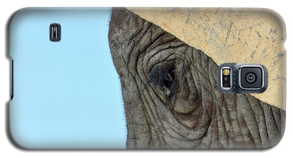 The Eye Of An Elephant Galaxy S5 Case