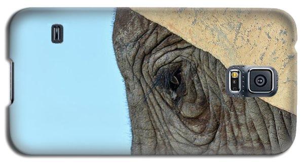 The Eye Of An Elephant Galaxy S5 Case