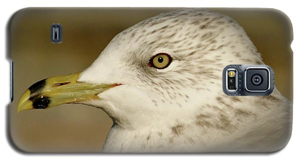 The Eye Of The Seagull Galaxy S5 Case