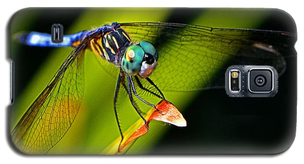 Galaxy S5 Case featuring the photograph The Face Of A Dragonfly 003 by George Bostian