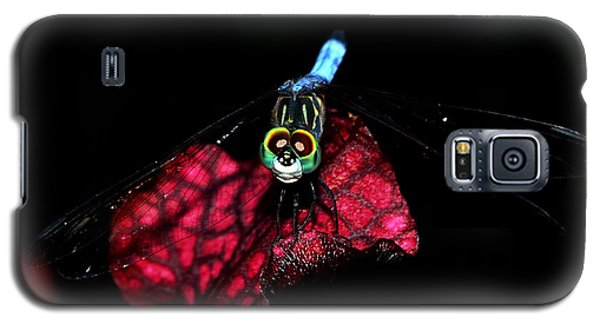 Galaxy S5 Case featuring the photograph The Face Of A Dragonfly 004 by George Bostian