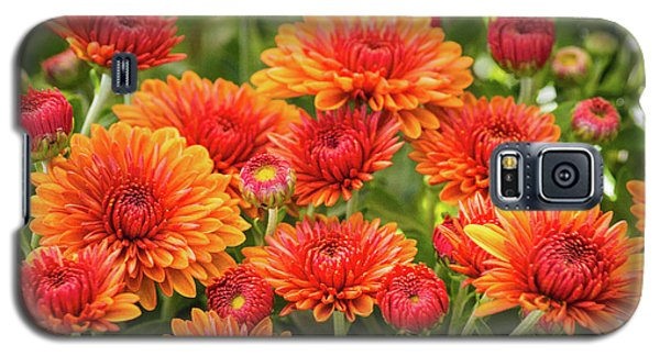 Galaxy S5 Case featuring the photograph The Fall Bloom by Bill Pevlor