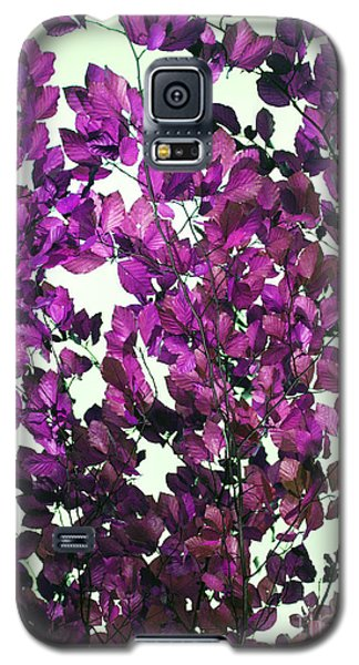 Galaxy S5 Case featuring the photograph The Fall - Intense Fuchsia by Rebecca Harman