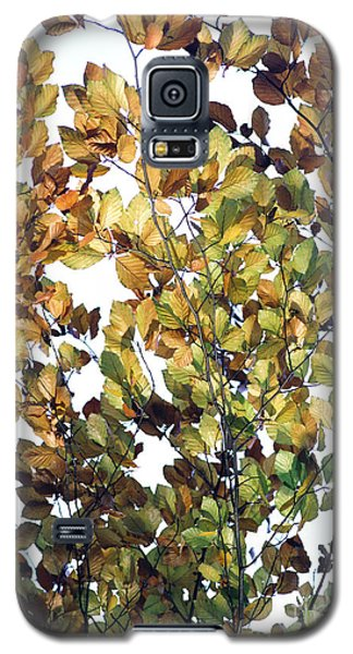 Galaxy S5 Case featuring the photograph The Fall by Rebecca Harman