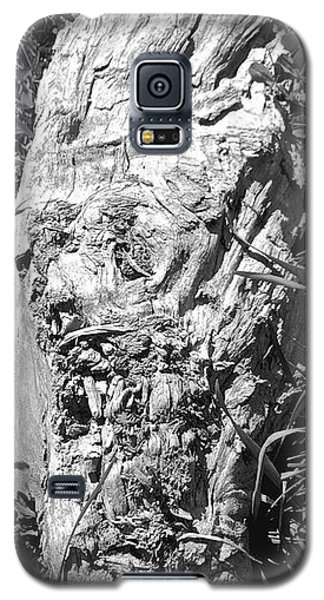 The Fallen - Unhidden Door Galaxy S5 Case