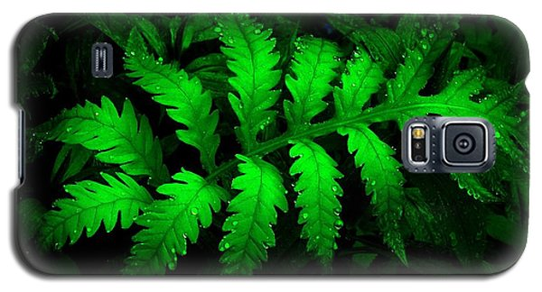 Galaxy S5 Case featuring the photograph The Fern by Elfriede Fulda