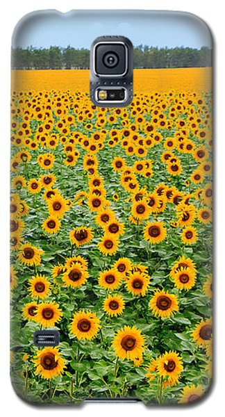 The Field Of Suns Galaxy S5 Case