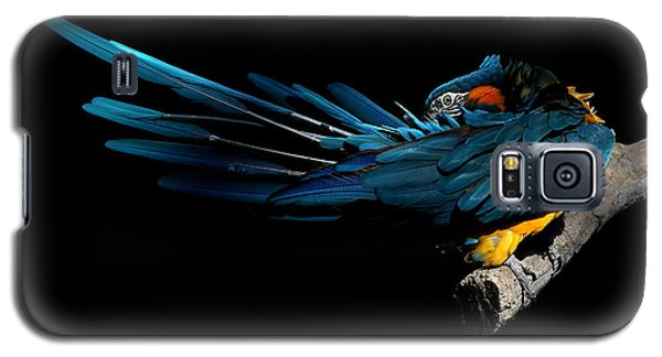 The Fine Art Of Preening Galaxy S5 Case