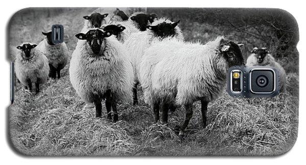 The Flock 1 Galaxy S5 Case