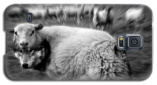 The Flock Is Safe Grayscale Galaxy S5 Case by Marian Voicu