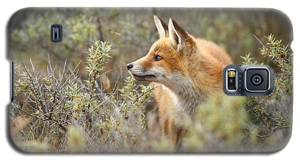The Fox And Its Prey Galaxy S5 Case