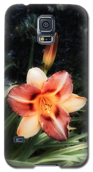 The Garden At St. Stephen's- May 2016 Galaxy S5 Case