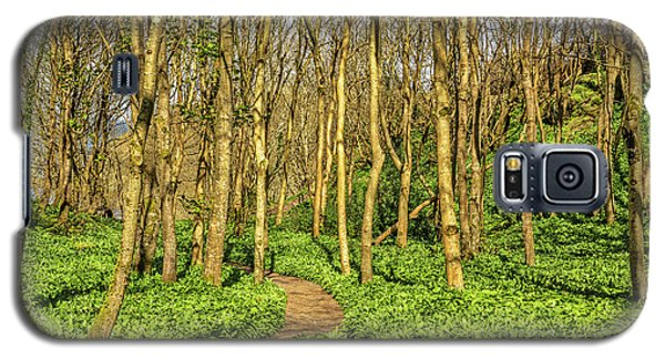 Galaxy S5 Case featuring the photograph The Garlic Forest by Roy McPeak