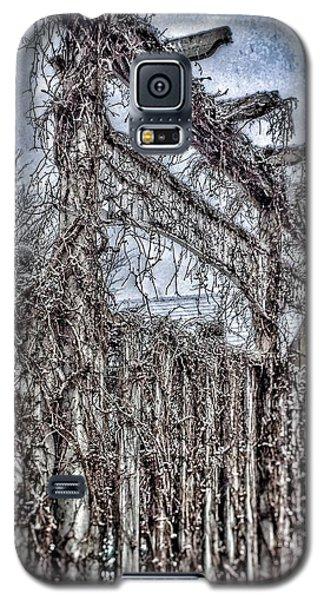 The Gate Galaxy S5 Case