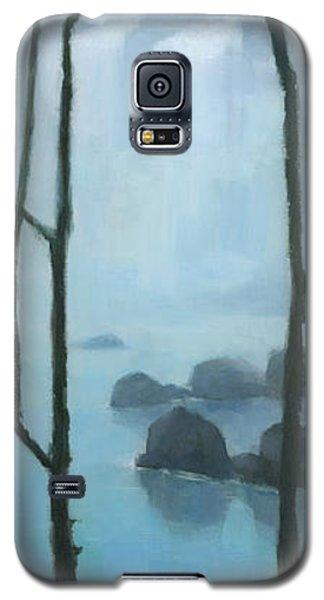 The Gathering Iguazu Falls Galaxy S5 Case by Steve Mitchell