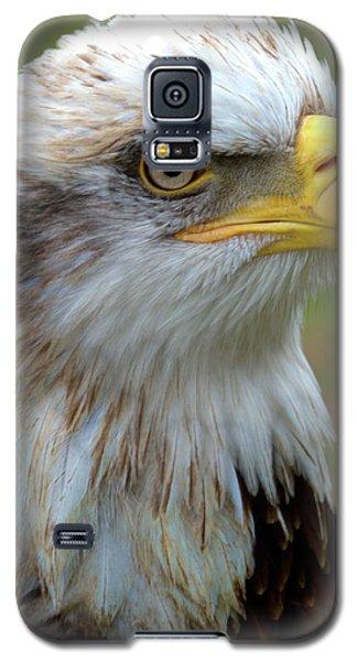 The Gaurdian Galaxy S5 Case by Stephen Melia