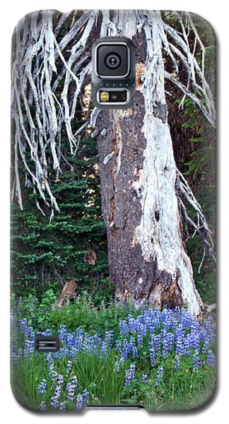 The Ghost Tree Galaxy S5 Case
