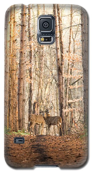 The Gift Galaxy S5 Case by Everet Regal