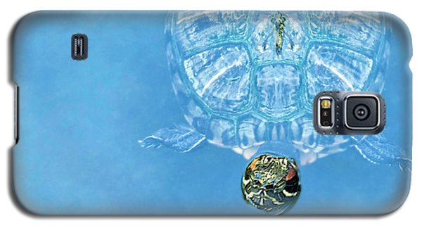 The Glass Turtle Galaxy S5 Case