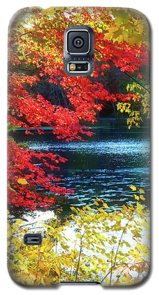 The Glory Of A New England Autumn Galaxy S5 Case