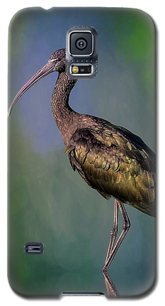 The Glossy Ibis Stroll Galaxy S5 Case