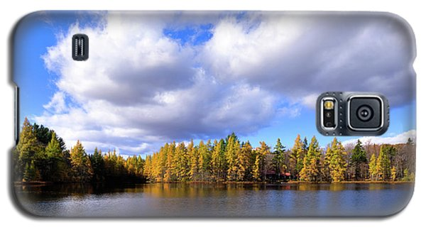 Galaxy S5 Case featuring the photograph The Golden Forest At Woodcraft by David Patterson