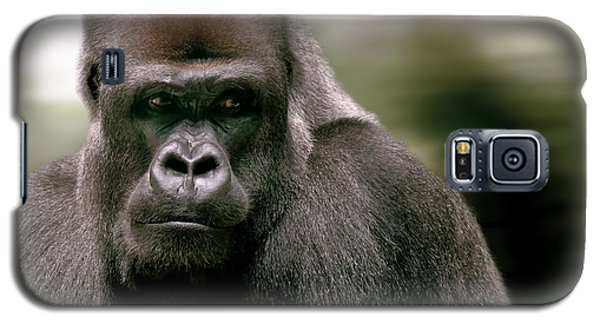 Galaxy S5 Case featuring the photograph The Gorilla by Christine Sponchia