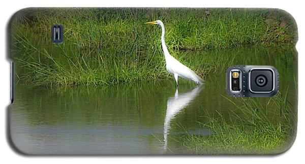 Great Egret By The Waters Edge Galaxy S5 Case