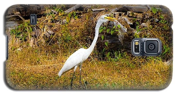 Egret Against Driftwood Galaxy S5 Case