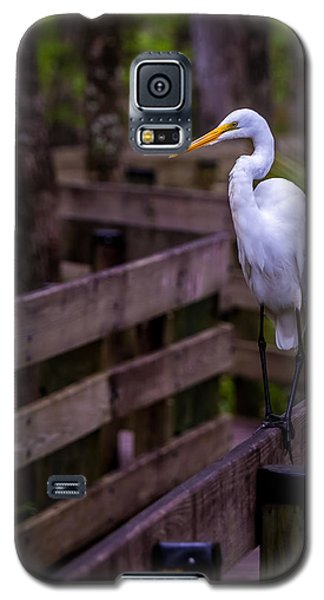 The Great Egret Galaxy S5 Case