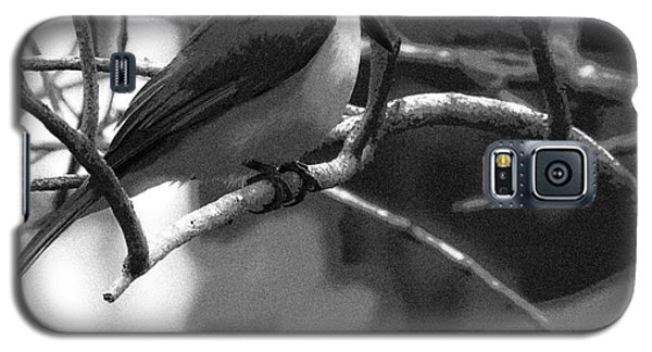 The Great Kiskadee  Galaxy S5 Case