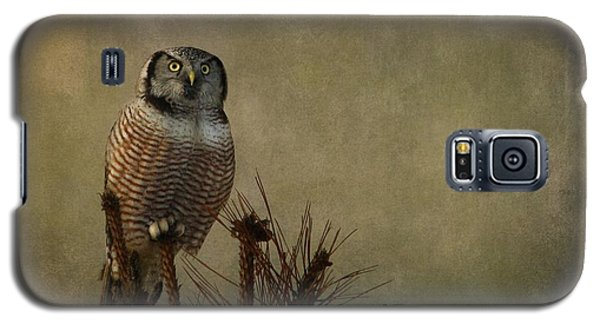 The Great Orator Galaxy S5 Case by Heather King