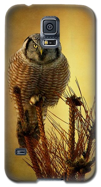 The Great Stare Down Galaxy S5 Case