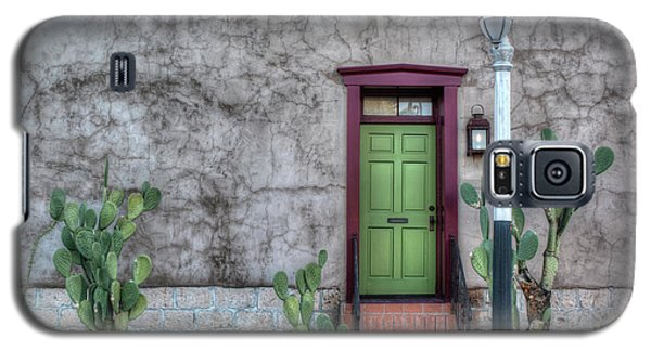 The Green Door Galaxy S5 Case by Lynn Geoffroy