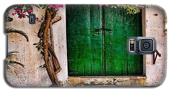 The Green Door Galaxy S5 Case by Rod Jellison