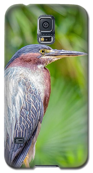 The Green Heron Galaxy S5 Case
