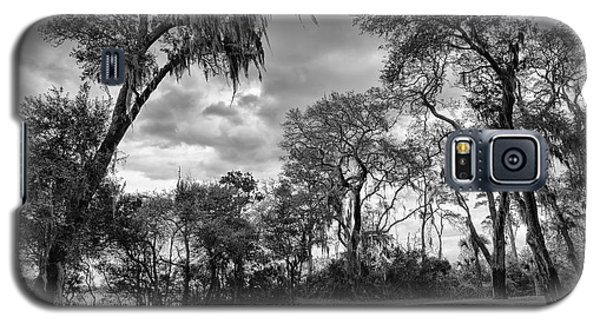 The Grounds Of Fort Caroline National Memorial Galaxy S5 Case