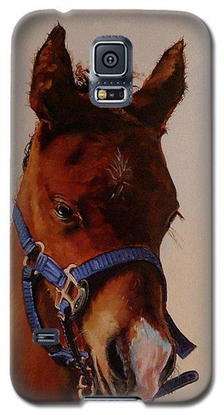 The Halter Galaxy S5 Case
