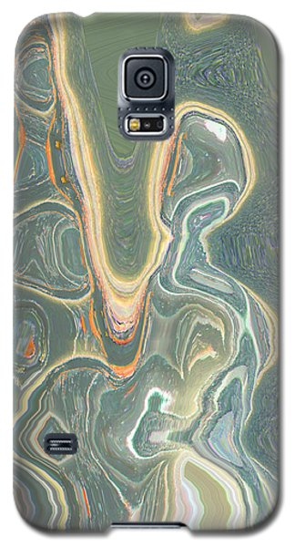 Galaxy S5 Case featuring the digital art The Harp Player by Lenore Senior