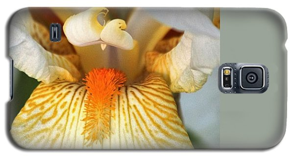 The Heart Of A Bearded Iris Galaxy S5 Case by Sheila Brown