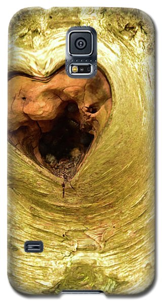 The Heart Of The Tree Galaxy S5 Case