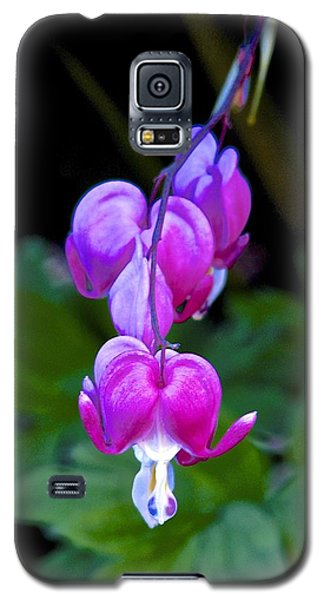 The Heart That Bleeds Galaxy S5 Case