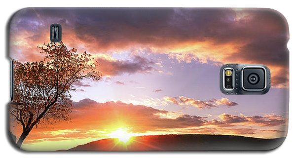 Galaxy S5 Case featuring the photograph The Heart Tree by Everett Houser
