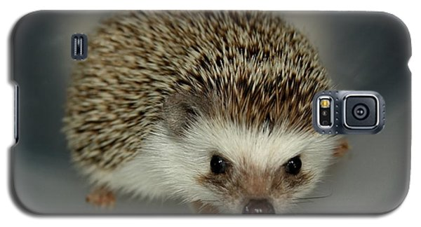The Hedgehog Galaxy S5 Case