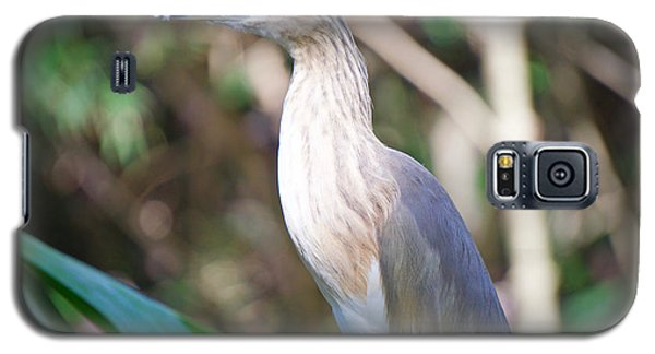 The Heron Galaxy S5 Case by Judy Kay