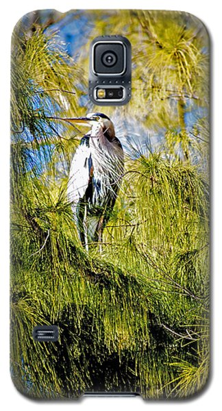 The Heron's Whiskers Galaxy S5 Case
