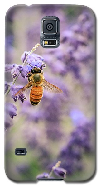 The Honey Bee And The Lavender Galaxy S5 Case