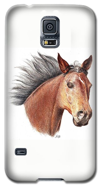 The Horse Galaxy S5 Case by Mike Ivey