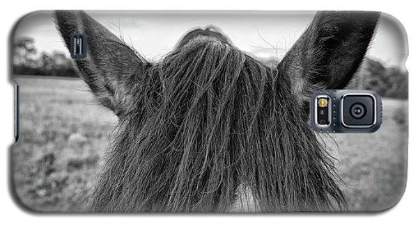 the Horses of Blue Ridge 6 Galaxy S5 Case