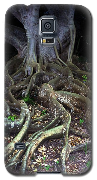 The Hungry Roots Galaxy S5 Case by Carl Purcell